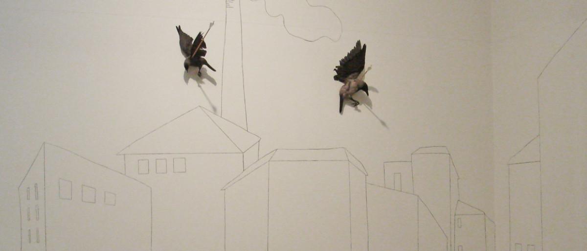 tote vögel 1240x880